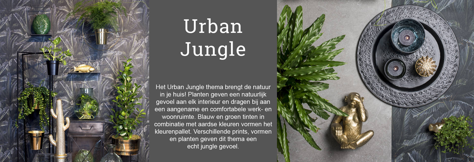 urban_jungle_02_NL.jpg